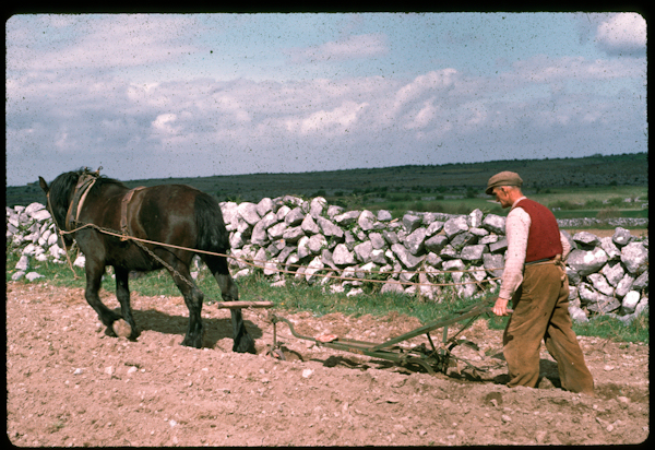 Tillage in old Kinvara